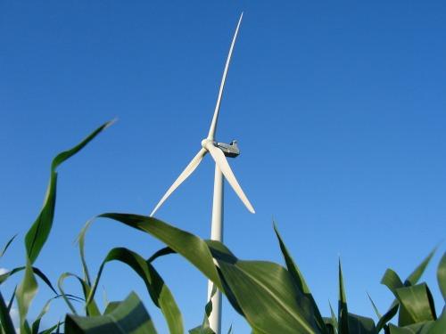 Wind_turbine_cc_license-_scelis-718556062_6c6555a656_o