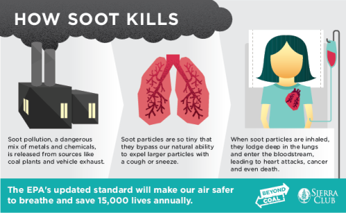 Sootrule_infographic