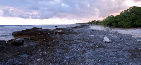 Witness to Climate Change: Rising Tide in the Tuamotus
