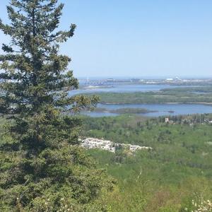 Duluth Hike - Overlook